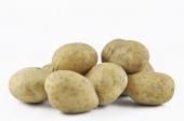 Aardappels (Frieslanders)