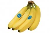 Bananen (Chiquita)