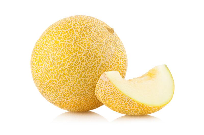 Meloen (Galia)