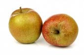 Appels (Goudreinet)