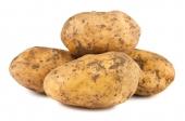 Aardappels (Nicola)