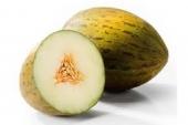 Meloen (Piel de sapo)