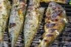 Barbecuepakket VIS