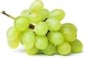 Druiven z-pit doosje