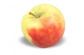 Appel geel / rood