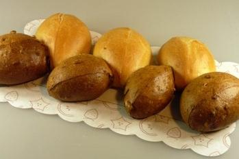Breekbrood hard